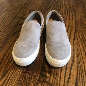 Gills Grey Suede Steve Madden Sneaker
